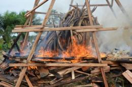 Gabonese President Ali Bongo on Wednesday set fire to five tonnes of ivory worth millions of euros