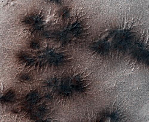 Giant spiders on Mars!