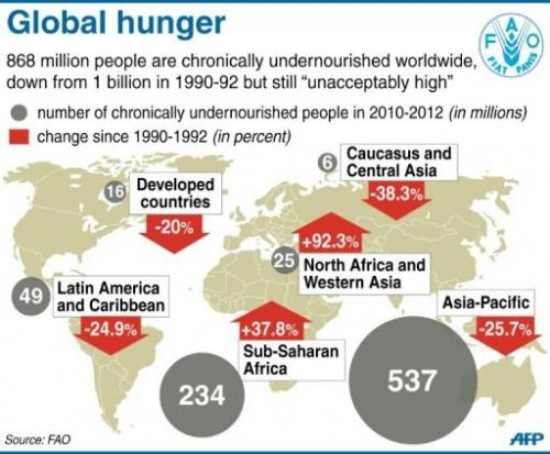 Global hunger