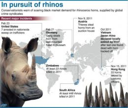 Graphic on recent rhinoceros poaching and horn trafficking incidents worldwide