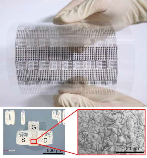 Group develops carbon nanotube based flexible display using flexographic printing technology