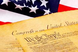 Guns, politics and the American constitution