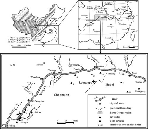 Hominins already inhabited the Three Gorges region of South China in Pleistocene