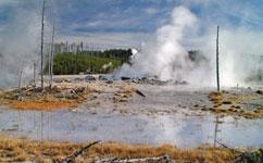 Hot-spring fossils preserve complete Jurassic ecosystem
