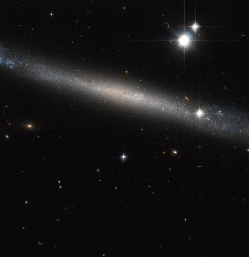 Hubble Eyes the Needle Galaxy