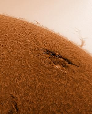 Incredible view of an active region on the Sun