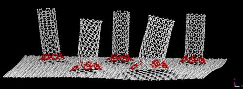 James' bond: A graphene / nanotube hybrid