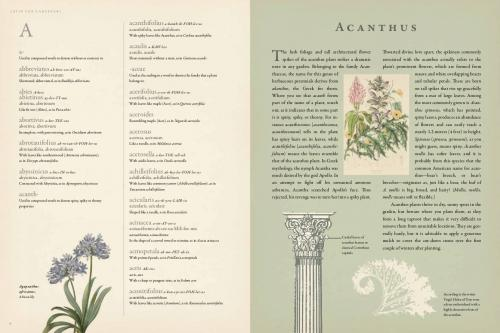 Latin for Gardeners--A useful, surprising, and beautiful resource