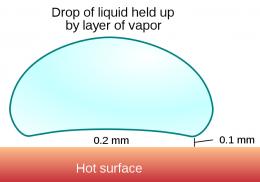 Leidenfrost droplet