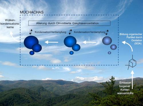Mechanism of aerosol aging identified