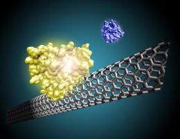 Nanotube technology leading to fast, lower-cost medical diagnostics