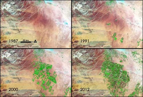 Nasa sees fields of green spring up in Saudi Arabia