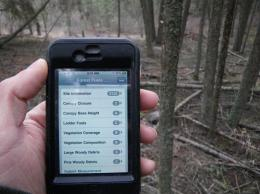 'Only you can prevent forest fires - with your smartphone