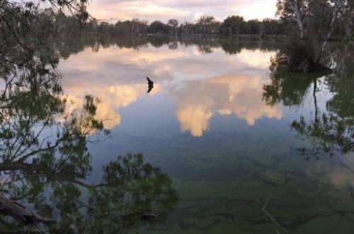 Over-exploitation, mismangement and dought have led to a critical drop in the water level of the Murray River