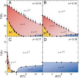 Copper fields: Quantum criticality in high-temperature cuprate superconductors