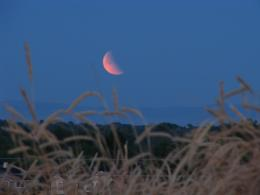 Partial eclipse of the strawberry moon
