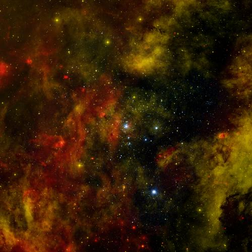 Probing a Nearby Stellar Cradle