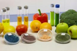 Products of biotechnological origin using vegetable and fruit by-products generated by the industry