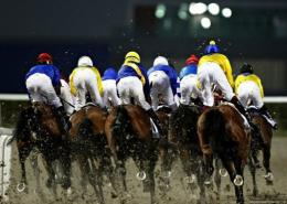 Racehorses that stay in the pack longest before breaking for the final sprint have best chance of earning prize money