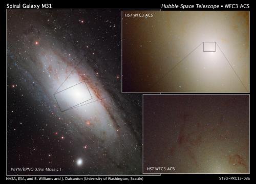 Rare ultra-blue stars found in neighboring galaxy's hub