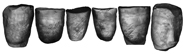 Research verifies a Neandertal's right-handedness, hinting at language capacity