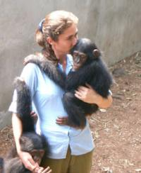 Sanctuary chimps show high rates of drug-resistant staph