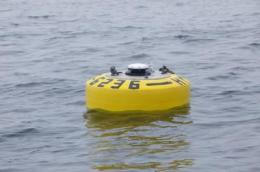 Sea-surfing 'wave glider' robot deployed to help track white sharks in the Pacific