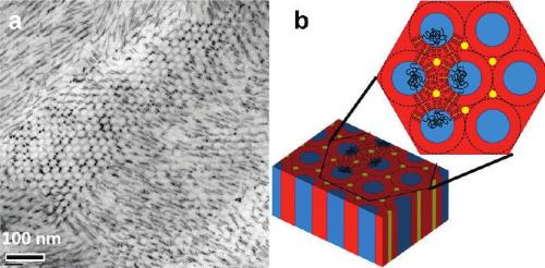 Self-assembling nanorods: Berkeley Lab researchers obtain 1-, 2- and 3-D nanorod arrays and networks