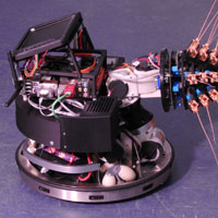 Shrew whiskers inspire ground-breaking robot design