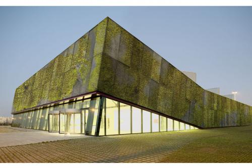 Researchers develop a biological concrete for constructing 'living' façades with lichens, mosses and other microorganism