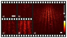 Single molecules in a quantum movie