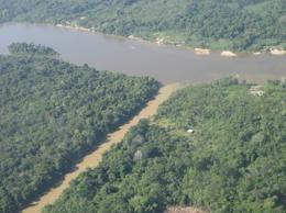 Small-scale gold mining impacts river algae in French Guiana