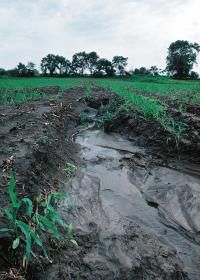Soil erosion modeling: It's getting better all the time