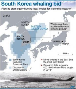 South Korea whaling bid
