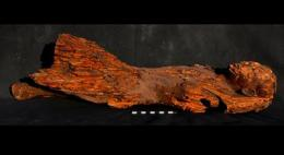 Statue, chapels and animal mummies found in Egypt by U of T team