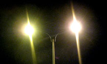 Streetlight policies could cast a shadow over wildlife