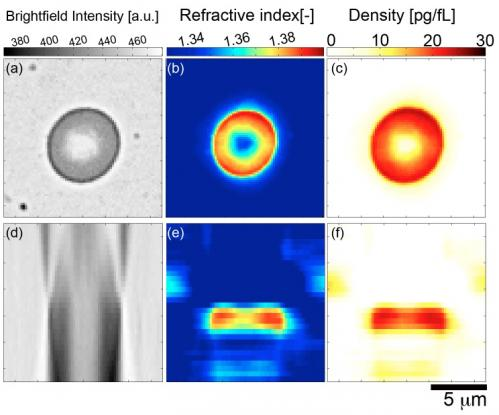 Optical microscopy enters a new phase: 3D measurement through tomographic bright field imaging