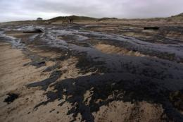 The Rena caused New Zealand's worst maritime pollution disaster when it ran aground three months ago