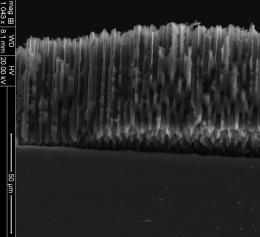 Закаленная кремниевая губка – перспективный материал для литий-ионных батарей