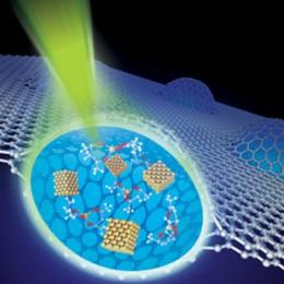 Physics group uses graphene to allow electron microscopy of liquid objects