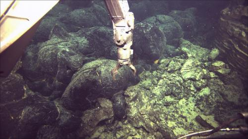 Undersea volcano gave off signals before eruption in 2011