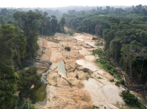 Unlicensed mining, especially for gold, has already devastated thousands of hectares in the Amazon forest
