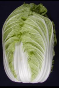 Unraveling the Chinese cabbage genome