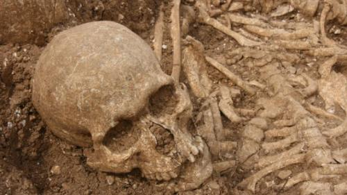 Viking mass grave linked to elite killers of the medieval world
