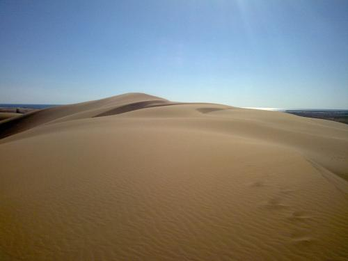 Why 'singing' sand dunes hum certain notes