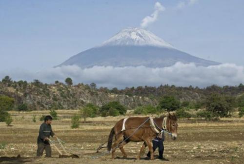 A farmer plows the land in San Nicolas de los Ranchos near the Popocatepetl Volcano on May 14, 2013