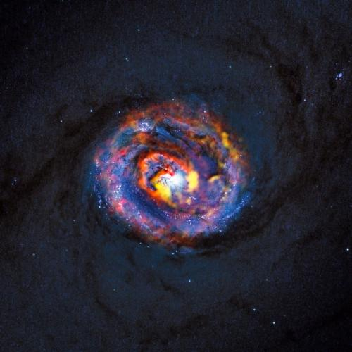 Astronomer contributes to study of black hole ingesting matter