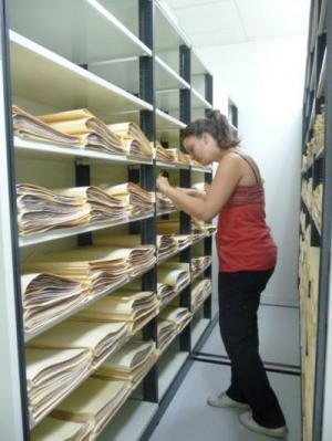 A synthesis of the 36451 specimens from the UNEX Herbarium in a new data paper