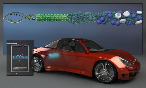 Better batteries through biology?