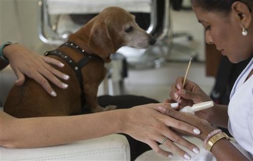 Brazil's booming beauty market draws investors